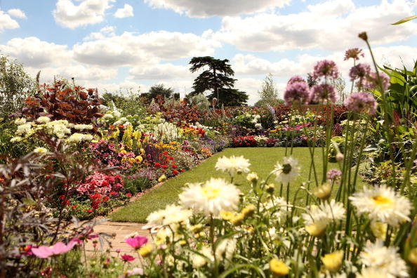 Flowerbed「The Annual Hampton Court Flower Show Is In Full Bloom」:写真・画像(0)[壁紙.com]