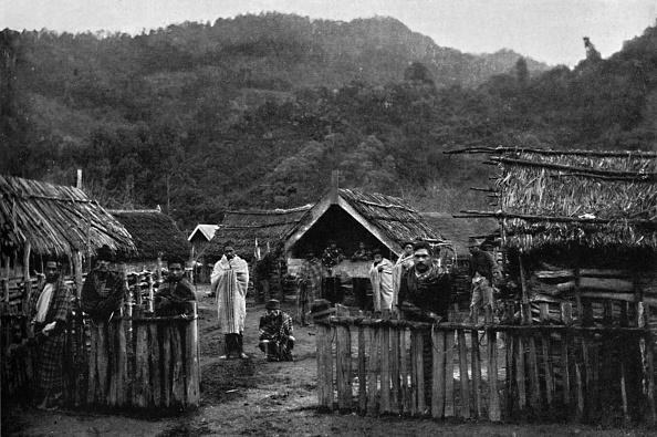 Land「Maori Pa」:写真・画像(14)[壁紙.com]