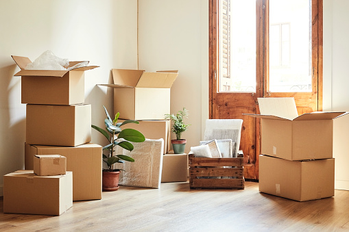 Home Ownership「Moving boxes and potted plants at new apartment」:スマホ壁紙(1)