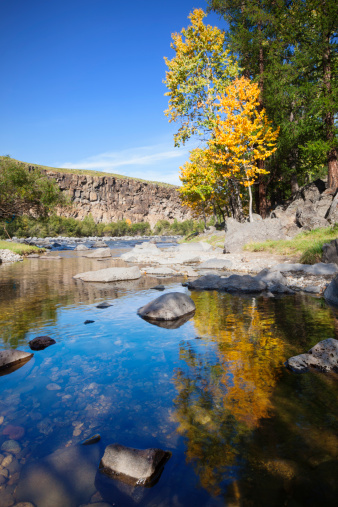 Orkhon Valley「Autumnal tree on the banks of Orkhon River」:スマホ壁紙(9)