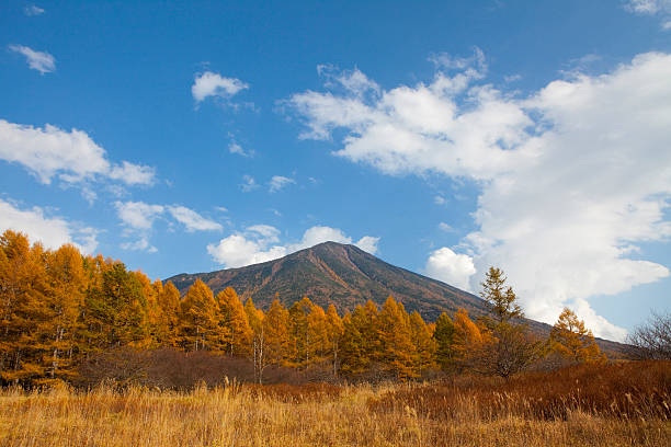 Autumnal Trees and Mount Nantai in Senjogahara:スマホ壁紙(壁紙.com)