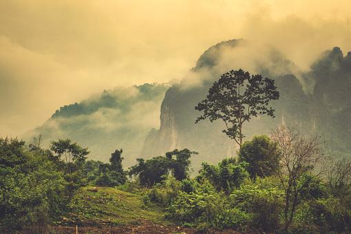 Steep「Extreme terrain landscape misty Phangern mountain range, Vang Vieng, Laos」:スマホ壁紙(3)