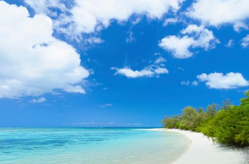 Shallow「Tropical South Pacific Island beach」:スマホ壁紙(1)