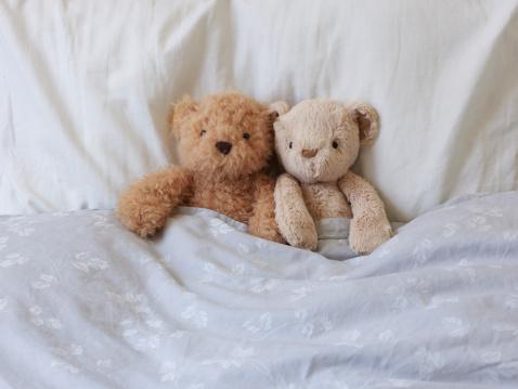 Duvet「Stuffed Teddy Bears in Bed Together.」:スマホ壁紙(3)