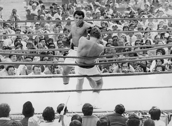 ボクシング「Bugner Vs Ali」:写真・画像(10)[壁紙.com]