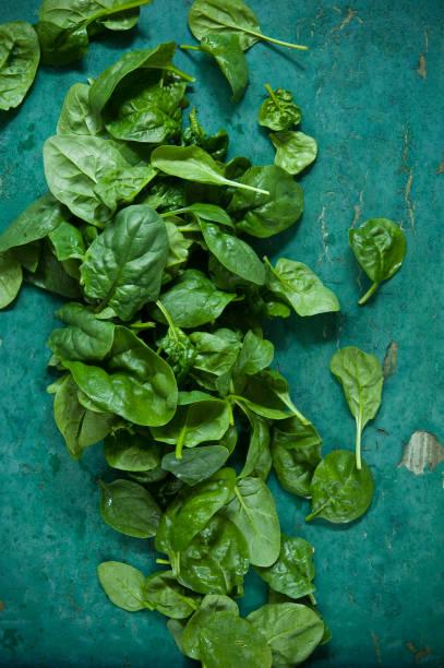 Spinach leaves on green background:スマホ壁紙(壁紙.com)