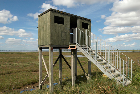 Norfolk Broads「Wildlife viewing hut, Norfolk Broads, United Kingdom」:写真・画像(11)[壁紙.com]