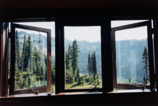 Window Frame「Window, Trees and Mountain」:スマホ壁紙(4)