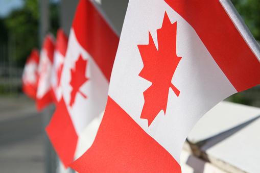 Canada Day「Canada day flags」:スマホ壁紙(3)