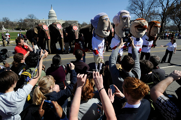 Ringling Brothers and Barnum & Bailey Circus「Ringling Brothers Parades Kicks Off Circus Coming To DC」:写真・画像(18)[壁紙.com]