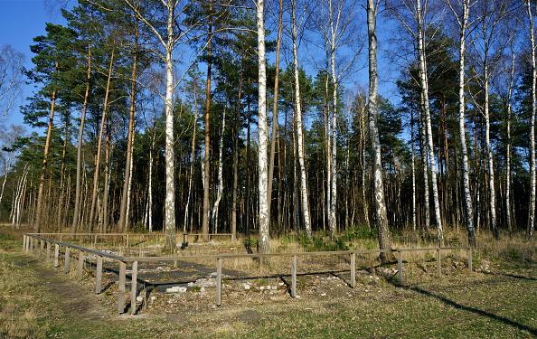 Richard Blanshard「Bergen-Belsen Concentration Camp」:写真・画像(10)[壁紙.com]