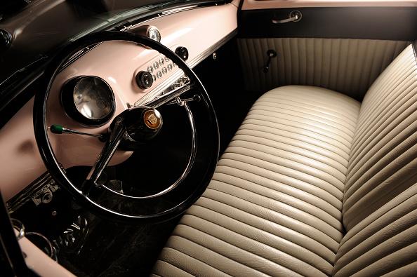 薔薇「Nash rolltop convertible Marilyn Monroe 1951」:写真・画像(15)[壁紙.com]