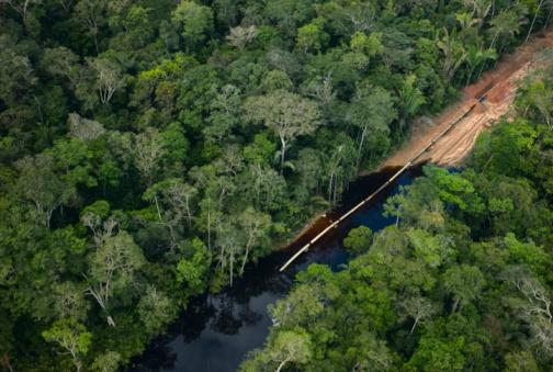 Amazon Rainforest「Pipeline under construction in rainforest」:スマホ壁紙(2)