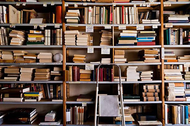 Stepladder by bookshelves in library:スマホ壁紙(壁紙.com)