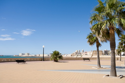 Town Square「Plaza with palm trees」:スマホ壁紙(9)