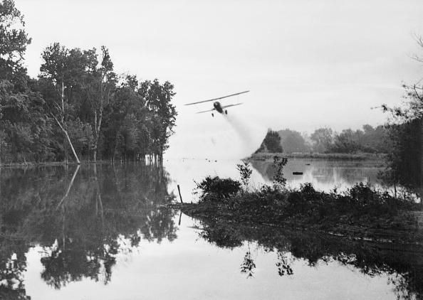 Insecticide「Mosquito Warfare」:写真・画像(19)[壁紙.com]