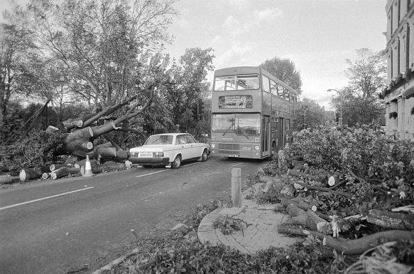 UK「Great Storm Of 1987」:写真・画像(19)[壁紙.com]