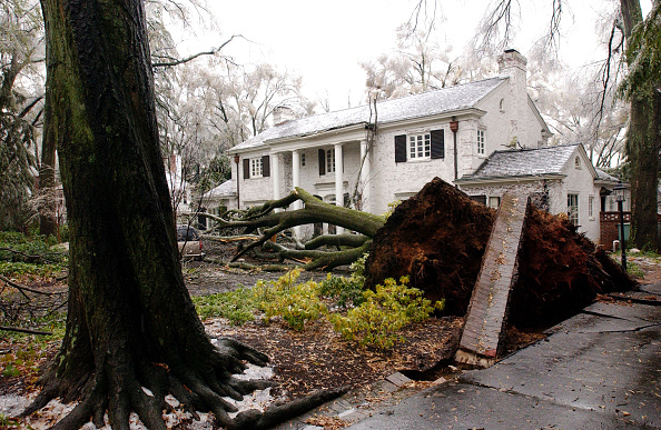 Damaged「Winter Snow Storm Pounds East Coast」:写真・画像(17)[壁紙.com]