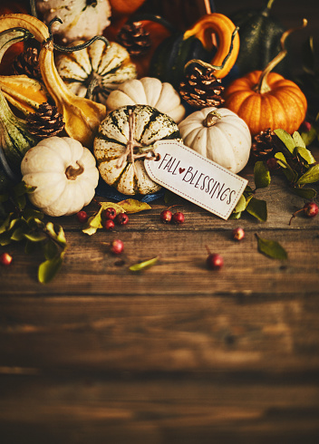 Pine Cone「Welcoming fall with pumpkin assortment still life and blessings greeting」:スマホ壁紙(13)