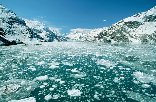 Glacier Bay National Park「Pack Ice in Alaska」:スマホ壁紙(17)