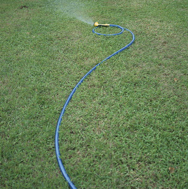 Water spraying from garden hose, Saipan:スマホ壁紙(壁紙.com)