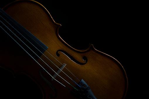Violin「Low key violin and rose flower soft lighting - Studio, South Africa」:スマホ壁紙(6)
