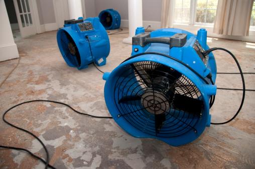 Healing「sewage flood home restoration」:スマホ壁紙(10)
