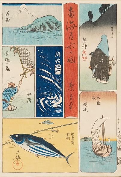 animal「Ukiyo-E Print - Nankaido Rokka-Koku」:写真・画像(14)[壁紙.com]