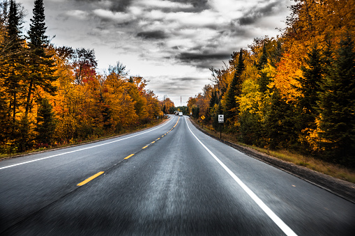 Empty Road「Empty road in Canadian parks area during fall」:スマホ壁紙(13)