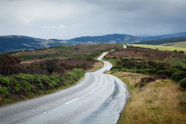 Empty road winding across moorland.:スマホ壁紙(壁紙.com)
