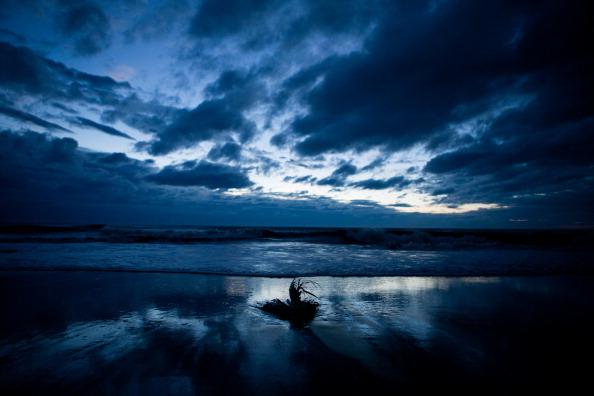 Frond「Virginia Begins Recovery From Hurricane Irene」:写真・画像(15)[壁紙.com]