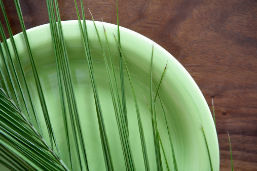 Frond「Palm frond on plate」:スマホ壁紙(17)