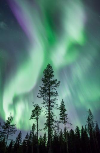 Scandinavia「Aurora, Kiruna, Sweden, Scandinavia」:スマホ壁紙(14)