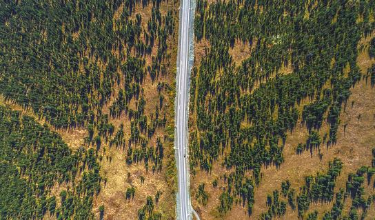 Symmetry「The Ergaki massif landscape. Aerial view.」:スマホ壁紙(12)