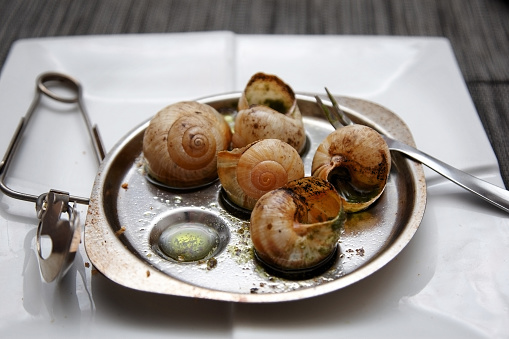 snails「Cooked snails in garlic butter」:スマホ壁紙(5)