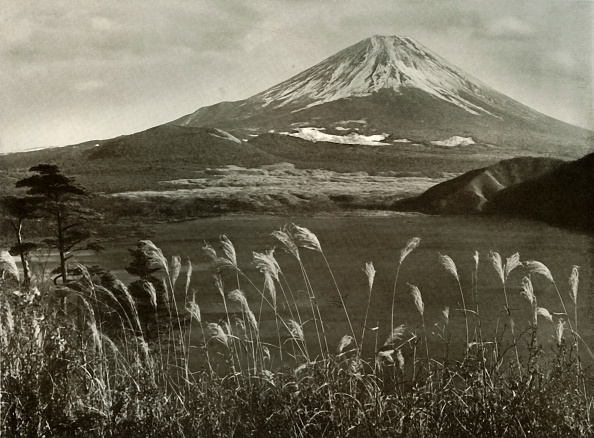 Distant「Fuji And The Kaia Grass」:写真・画像(19)[壁紙.com]