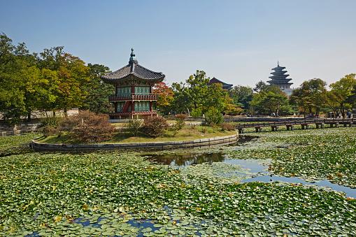 Water Lily「The Hyangwonjeong Pavilion in Gyeonbok, Seoul」:スマホ壁紙(19)