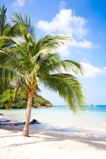 バリ島「白砂のビーチでサメット島(タイ)」:スマホ壁紙(12)