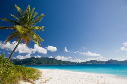 Frond「white sand beach on tropical island in the Caribbean」:スマホ壁紙(7)