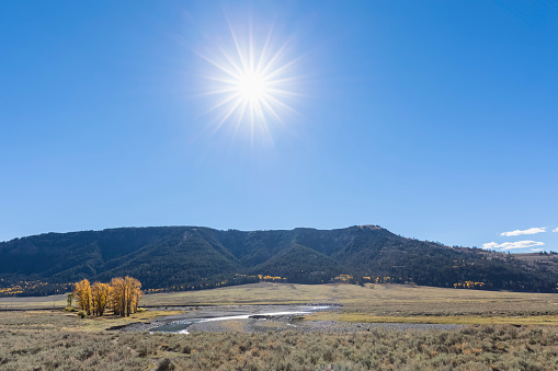 Back Lit「USA, Yellowstone National Park, Lamar Valley, Lamar River」:スマホ壁紙(16)