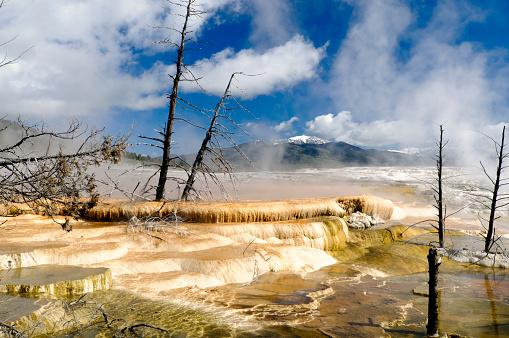 Mammoth Hot Springs「Yellowstone National Park Mammoth Hot Springs Upper Terrace HDR」:スマホ壁紙(4)
