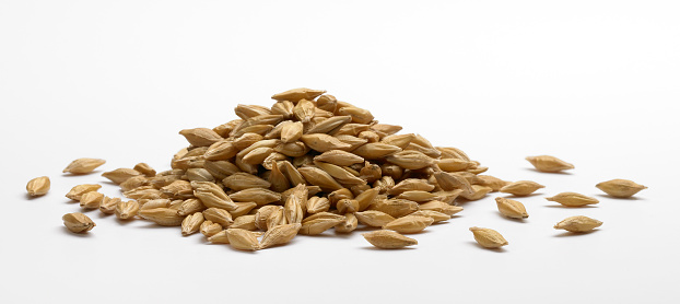 Barley「Pile of barley」:スマホ壁紙(19)