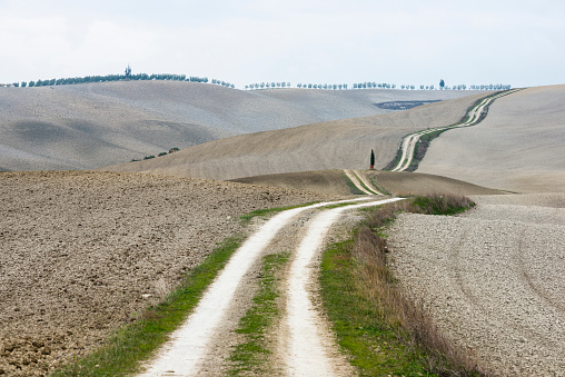 Earth「Italy, Tuscany, San Quirico Dorcia, Long twisting rural road leading through endless gray fields and lonely cypress trees」:スマホ壁紙(10)