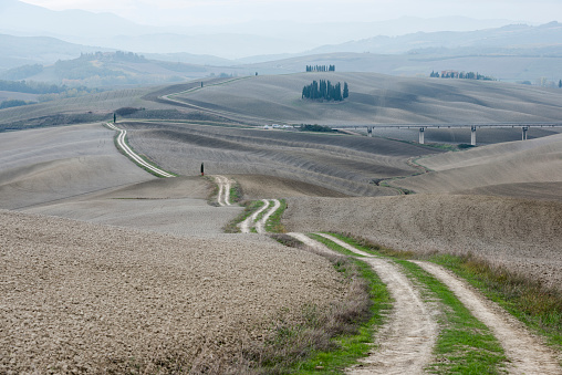 Earth「Italy, Tuscany, San Quirico Dorcia, Long twisting rural road leading through endless gray fields and lonely cypress trees」:スマホ壁紙(9)
