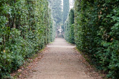 観賞用庭園「Italy, Tuscany, Florence, Footpath in Boboli gardens」:スマホ壁紙(4)