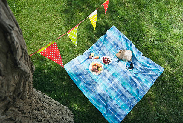 Italy, Tuscany, Picnic blanket with food and flag line above it:スマホ壁紙(壁紙.com)