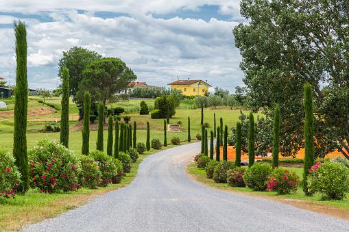 Farm「Italy, Tuscany, Monsummano Terme, country road」:スマホ壁紙(2)