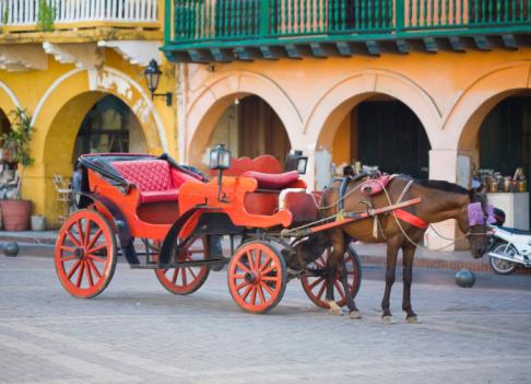 Horse-drawn carriage「馬車カルタへナ,コロンビア」:スマホ壁紙(13)