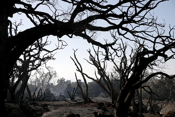 カリフォルニア州「Mudslides Kill At Least 17 People In Santa Barbara County Where Wildfire Scorched Hillside」:写真・画像(13)[壁紙.com]