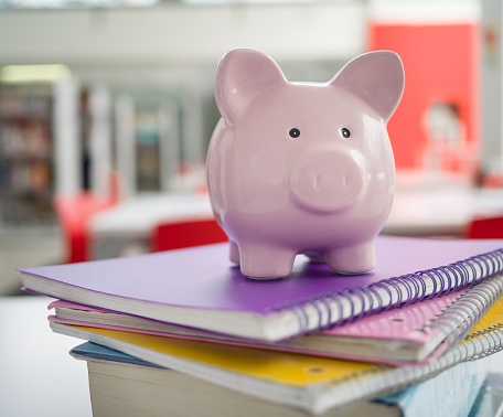 Focus On Foreground「Pink piggy bank on top notebooks - Student loans」:スマホ壁紙(13)
